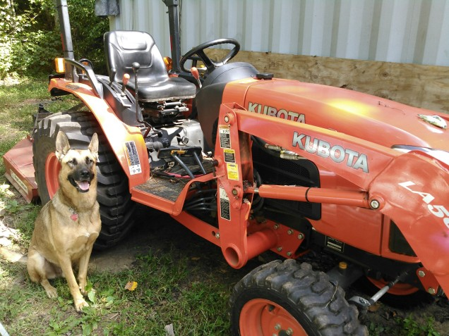 Cesar Anxious to go Bush Hogging, Waiting for Permission to Get on Tracktor